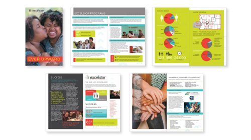 Shiere Melin, non-profit annual report, inforgraphics, charts, graphs